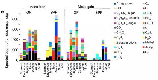 图2。 meta-mass-shift化学分析结果显示在无菌或SPF小鼠中消化道不同区段已知质量差异的光谱计数