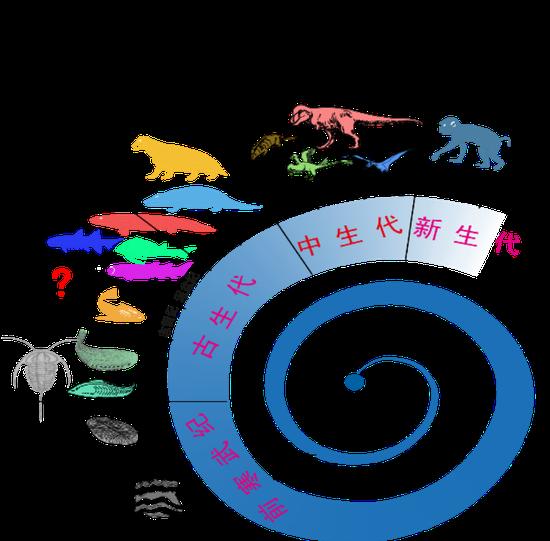 ▲地球生物進化旅程(圖片由朱敏提供)