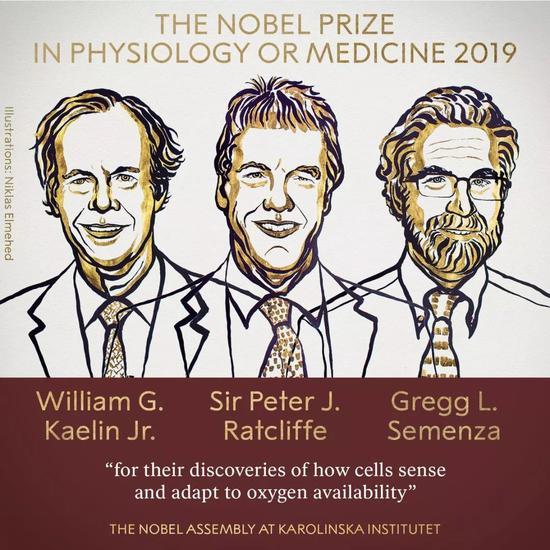 圖片來自諾貝爾獎官網。