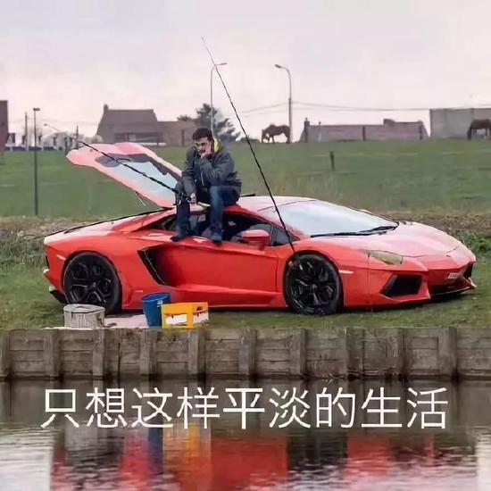 「凤凰娱乐自动投」业绩惨淡溢价10倍收购亏损企业 高升控股大股东被查