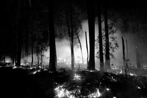 澳大利亚山火波及科学研究