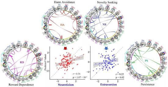 对四种气质个性评分具有预测性能的脑功能连接,及其在独立数据集中的预测推广