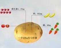 图6 马铃薯与果蔬营养成分当量