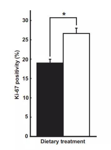 ▲Ki-67蛋白的水平上升了40.2%(图片来源:《Cancer Prevention Research》)