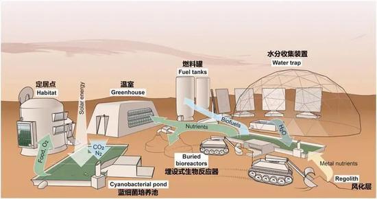 图2。 基于蓝细菌的火星生命维持系统
