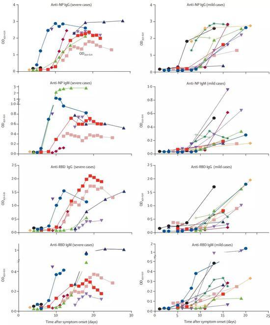 IgG和IgM,NP抗体和RBD抗体的变化趋势各自还有不同