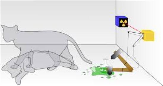 薛定谔的猫思想实验,图自维基百科