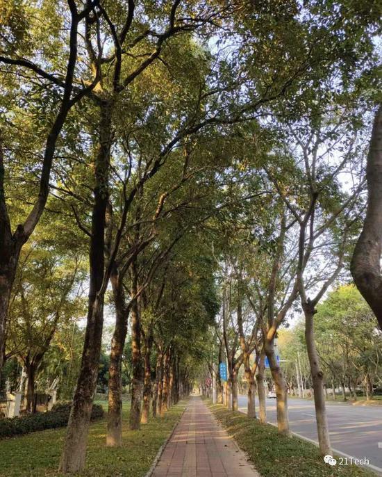 http://www.reviewcode.cn/yunweiguanli/101973.html