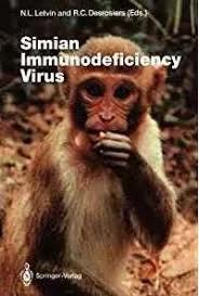 图2。黑猩猩为猴免疫缺陷病毒(SIV)的自然宿主
