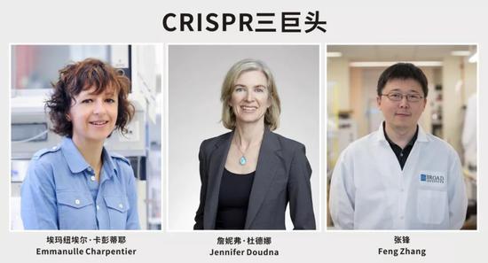 CRISPR奠基人获沃尔夫奖,张锋再次陪跑,诺奖还有戏吗?