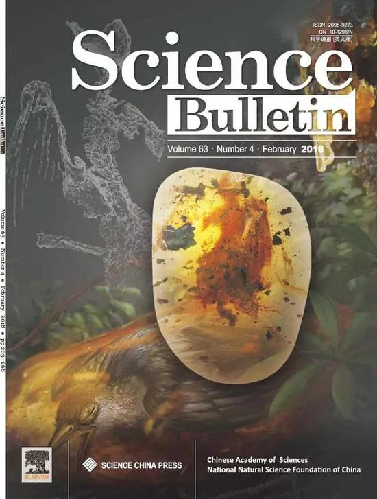 蜂鸟般大小!史前一亿年的琥珀中的古鸟登上杂志封面