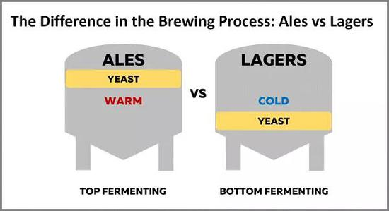 工业啤酒和精酿啤酒:发酵工艺的区别