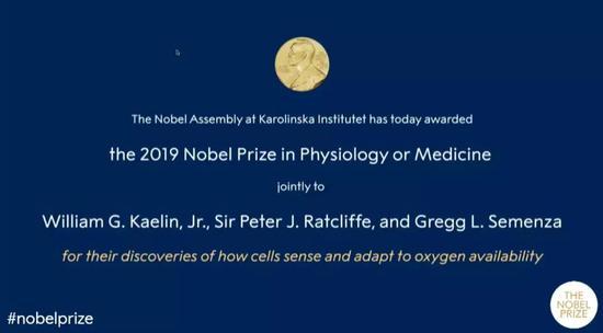 """诺贝尔生理学或医学奖""""细胞感知氧气通路""""摘得桂冠诺贝尔生理学医学桂冠"""