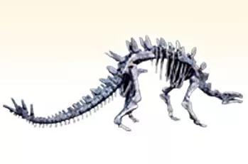 太白華陽龍,出處:自貢恐龍博物館官網