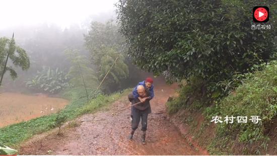 农村妈妈做了一道家乡特色菜,爸爸冒雨背90岁奶奶过来品尝。 图片来自西瓜视频截图