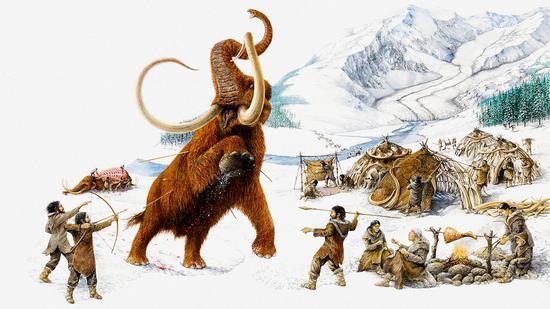 ▲科学家在北极地区发现了猛犸被人类狩猎的痕迹,以此推断4.5万年前人类就迁移到了北极。(来源:Science)