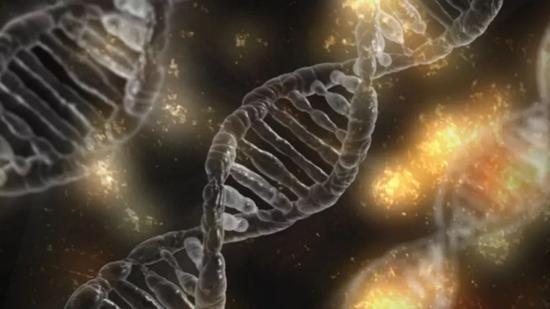 从最近的一些进展来看,对不携带BRCA1/2突变的患者,PARP抑制剂治疗也可能有获益