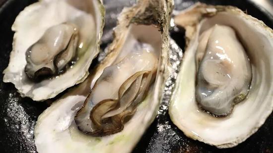 """别吃!每年都有""""中毒预警"""",这种海鲜到底有多毒?"""