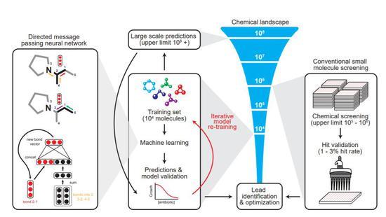 机器学习发现抗生素