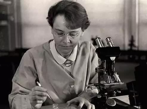 图丨1983年诺贝尔生理学或医学奖得主巴巴拉·麦克林托克