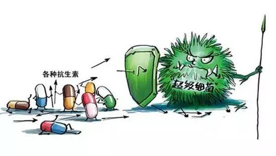 人体内有能抵抗超级细菌的分子吗?有!大肠杆菌抗生素基础理论
