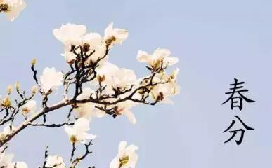 """春分为什么叫""""春分""""?春分这些有..."""