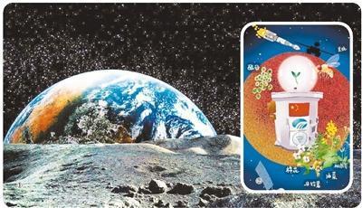 ①月面示意图。 ②手绘嫦娥四号生物科普实验载荷示意图。