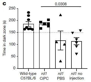 ▲成功接受CiPCs移植的小鼠,和视力正常的小鼠一样更偏爱留在黑暗环境