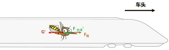 为什么高铁上的蚊子不会被甩到车尾?你也许懂了,但并没有完全懂…