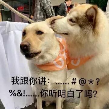 「集美百家官网」胸中山水阔 笔下牡丹雅