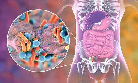 机制难寻,肠道菌群?这些棘手的大脑疾病,幕后都有肠道细菌在操控?