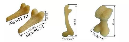 3D打印大尺寸骨模型