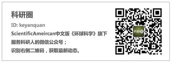 龙誉娱乐下载,中国元素闪耀萨洛尼卡国际博览会