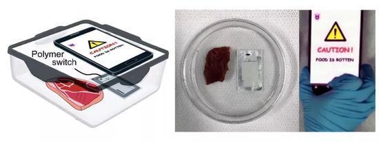 纳米传感器捕捉肉变质的分子,并将消息传给手机。图片来源:参考文献[1]