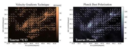 图二。 金牛座大分子星云的磁场形态。左图为速度梯度技术的计算结果,右图为Planck卫星在353G赫兹的频率下对星际尘埃偏振的测量结果。