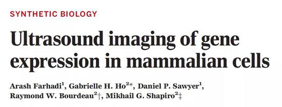 突破显微镜的局限,这套系统能看清体内基因表达!哺乳动物微生物局限