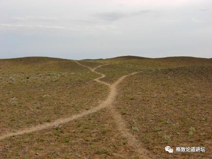 无人区本没有路,野驴走多了就变成了路?