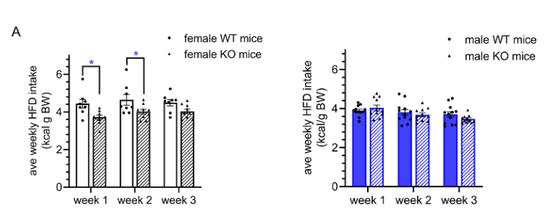 发现肥宅基因!抑制这个基因能变的不爱糖油、运动加倍
