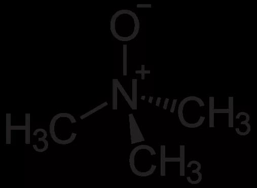 TMAO的化學式 來源:https://zh.wikipedia.org/wiki/%E6%B0%A7%E5%8C%96%E4%B8%89%E7%94%B2%E8%83%BA