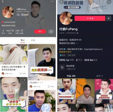 来源 / 小红书和抖音平台上付鹏账号主页 燃财经截图