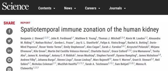 近70000个细胞测序,人类首个肾脏免疫细胞图谱问世细胞肾脏细胞核