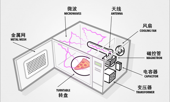 现代微波炉的基本结构 | 图源:BusinessInsider