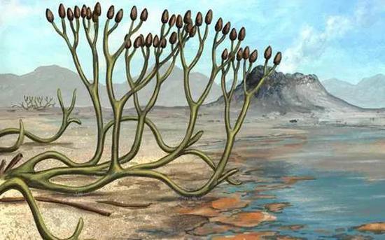 小小孢子在远古敲来警钟:大灭绝源于臭氧层剥离