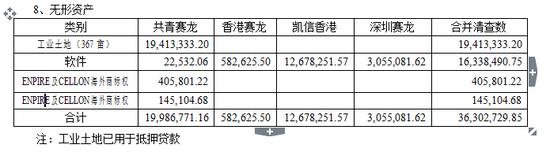 合并报表(无形资产)(审计报告P4)