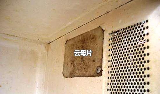 可别小瞧它 微波炉中的云母片你知道么?