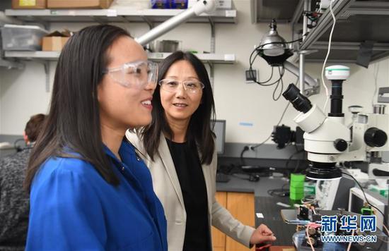 1月31日,在位于美国加利福尼亚州帕洛阿尔托的斯坦福大学,鲍哲南教授(右)在实验室对科研团队成员徐洁进行指导。