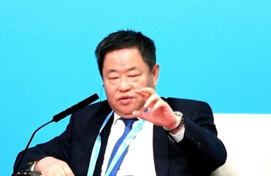 全国政协委员、中国中化集团公司董事长 宁高宁 图片来源:视觉中国