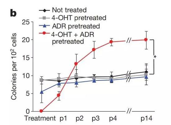 经历衰老状态后复活的癌细胞增殖能力显著增强(红色)