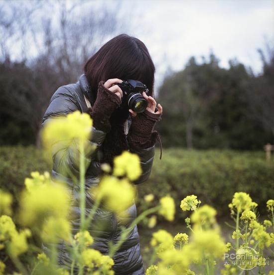成为大师的必经之路 微距摄影必须注意的地方山西万荣门事件图片