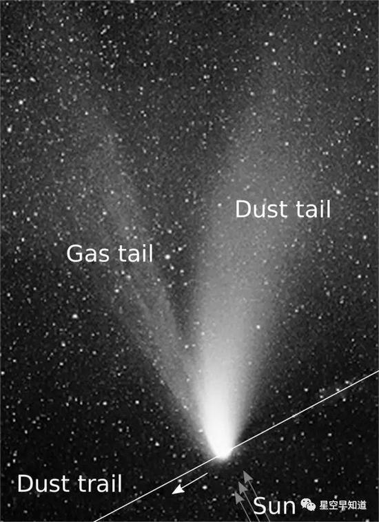 典型彗星結構示意圖:包括太陽風作用下背離太陽方向的塵埃彗尾和氣體彗尾  來源:wiki